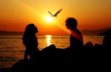 sunset-summer-sea-seagull-bird-girl-man-silhouette-sun-ray-love-freedom-together8